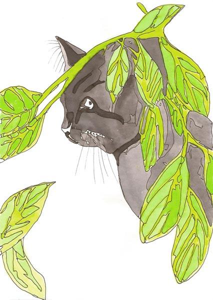 Chat - Illustration - Isabelle Milléquant Surr