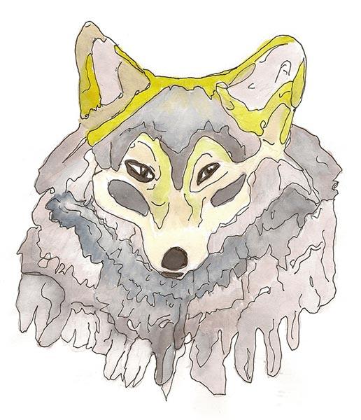 Loup - Illustration - Isabelle Milléquant Surr